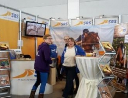 Pferd Bodensee 2020