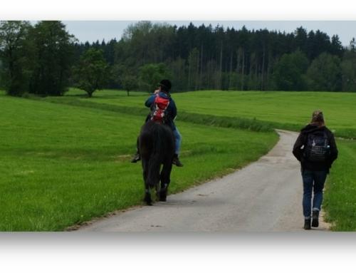 """Mit Gott und den Pferden in der Natur unterwegs oder anders gesagt """"Pilgern mit Pferd"""""""